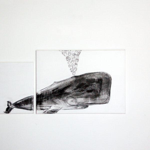4 - Balena